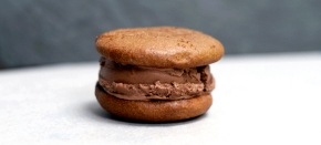 Gingerbread cookie sandwich